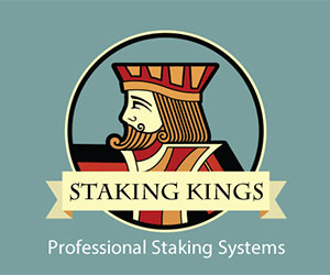Staking Kings Logo